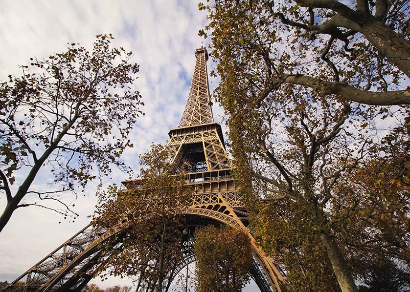 Estudia negocios en Paris